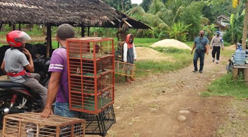Satgas Covid-19 Kecamatan Padamara Tutup Tiga Lapak Merpati